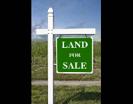 DOWSE before you buy land.